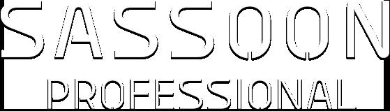 banner-sassoon